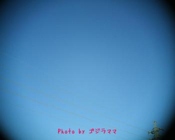 VQ1015R2 20120130-1.jpg