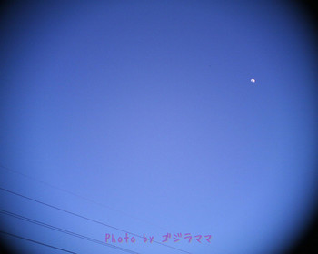 VQ1015R2 20120203.jpg