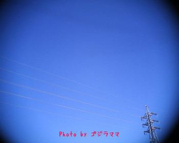 VQ1015R2 20120209-1.jpg