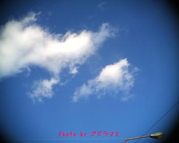 vq1015r2 20120126-1.jpg