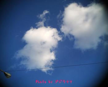 vq1015r2 20120126-3.jpg