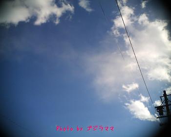 vq1015r2 20120126-4.jpg