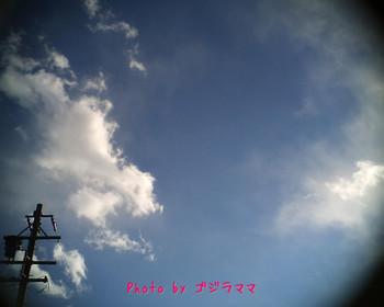 vq1015r2 20120126-5.jpg